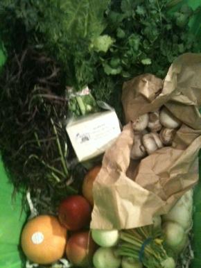 No Impact Week: Focus on Food &Energy