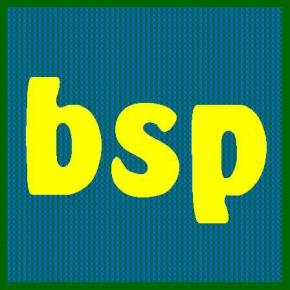 Potpourri: BSP at SixMonths