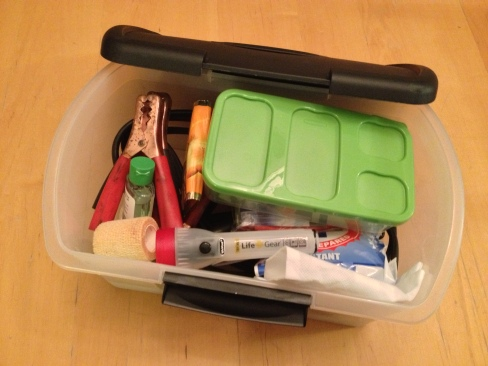 A medium-sized plastic bin holds it all together neatly.